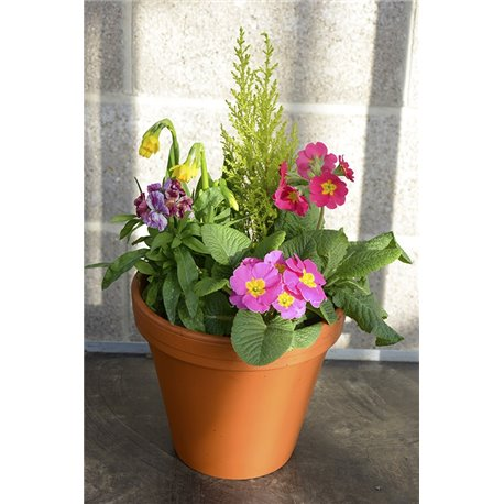Planter Outdoor Terracotta Spring