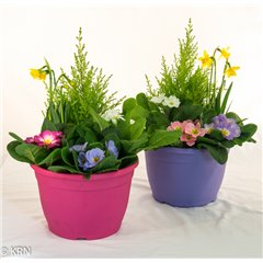 Planter Outdoor Colour Tub 23cm