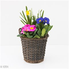 Planter Outdoor Spring Tall Basket 22cm x 1
