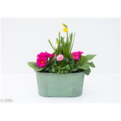 Planter Outdoor Peppermint Oval 21cm x 1