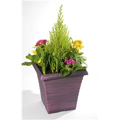 Planter Outdoor Tall Square with Spring Plants 25cm